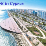 地中海キプロスで働いてみませんか?