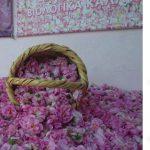 アグロス村とキプロス産ダマスクローズ(Agros and Damask Rose)